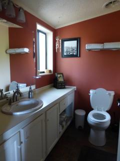 Master bathroom, handicapped shower