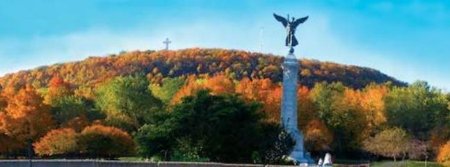 view of the Mont-royal and it's angel in automn