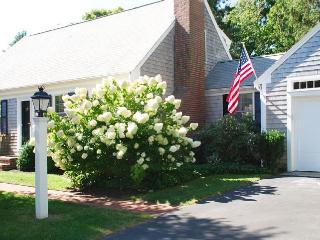 17 Palmer Drive Chatham Cape Cod - The Little Caper