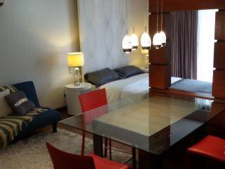 Ayala CEBU 45sqm Furnished Studio Unit, Cebu City