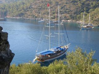 Platin Yachting Yacht Charter in Turkey TR012