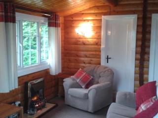 North Wales Lodge.,  Eryri  209., Bronaber