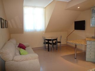 Apartamento en Ainsa (Pirineo Aragonés)