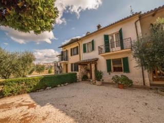 Collis Paradisi Bed&Breakfast. Vista su Assisi