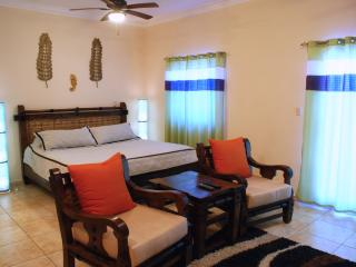 Ocean Dream beachfront studio close to all, Cabarete
