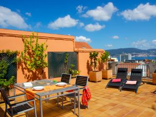 Right at the center w/ terrace, sea views and WiFi, Vigo
