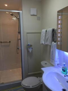 Downstairs shower and toilet.