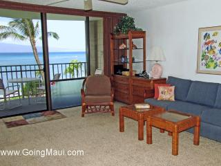 Direct Oceanfront Studio Unit 307 -Valley Isle Resort