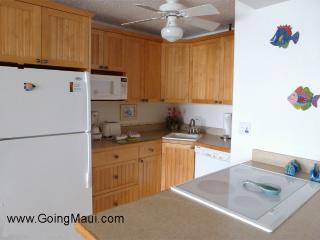 All new 307 Kitchen -Dishwasher, microwave, icemaker, range