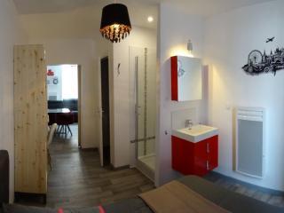 Belle appartement centre ville pour 4 personnes, Lourdes