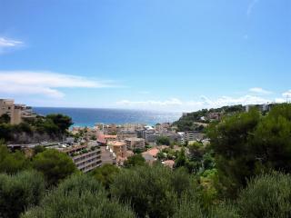 Magnifique appartement vue sur mer, Roquebrune-Cap-Martin