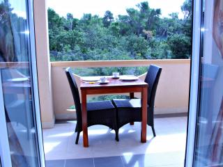 Studio apartment for two in city center  A3, Novalja
