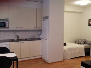 Stylish Studio Apartment close to the City Center, Oulu