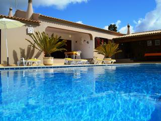 VILLA  with Large Garden  Areas, Jacuzzi and Privat  SwimmingPool