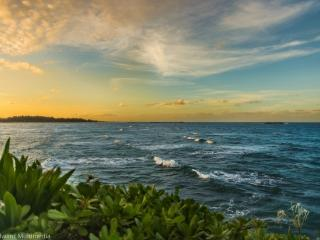 Hibiscus Estate - Winter Specials! Enjoy the view!, Laie