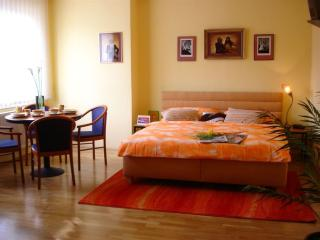 Wenceslas Square A715 apartment in Nove Mesto with WiFi & lift.