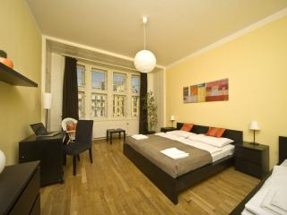Wenceslas Square A402 apartment in Nove Mesto with WiFi & lift.