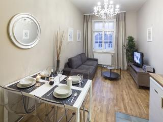 Wenceslas Square A704 apartment in Nove Mesto with WiFi & lift.