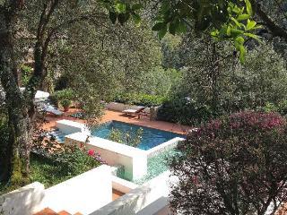 Versilia Villa with Pool near Town - Villa Nocchi