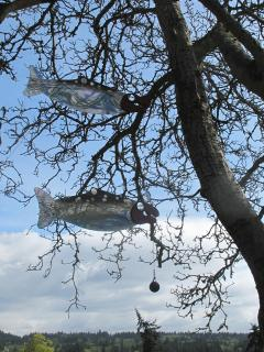 Salmon sculpture by Buster Simpson  in the walnut tree