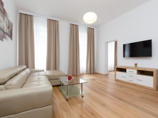 Comfortable 1 Bedroom, Viena