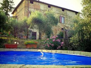 L'olivella, Perugia