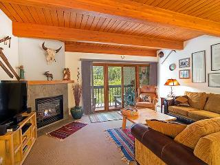 Perfectly Priced Town Of Telluride 2 Bedroom Condo - RB101