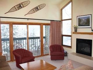 Comfortable Breckenridge 3 Bedroom Ski-in - RB204, Telluride
