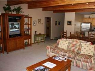 Inviting Town Of Telluride 2 Bedroom Condo - RD03