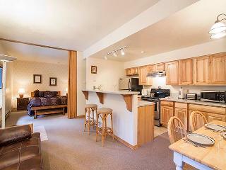 Convenient  0 Bedroom  - LU3A, Telluride