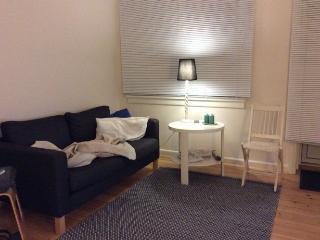 Renovated bright Copenhagen apartment near green area