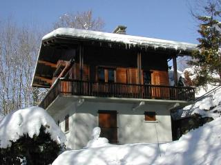 family cottage 90 m²  - 8 p -in Charming Samoens