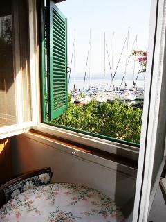 SA1(2+1): window view