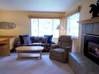 Wonderful  2 Bedroom  - 1243-104421, Breckenridge