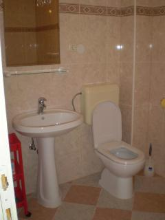A2(5+1): bathroom with toilet