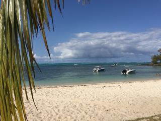 Dream Beach Villa - On the Beachfront, Roches Noire