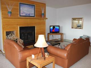 TR415 Great Condo w/Wifi, Clubhouse, Mountain Views, Fireplace, Silverthorne