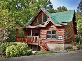 Southern Hospitality a two bedroom cabin that sleeps six. Free WiFi internet.