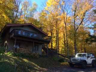 Renovated Chalet - 1 mi from mt - lake & mt views, Hunter
