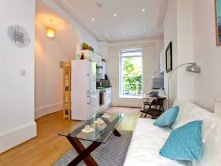 Sunny 1 Bedroom Apartment in Islington, Londres