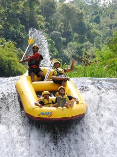 Bali RAFTING - one day trip, 30 USD per person, transfer from villa included