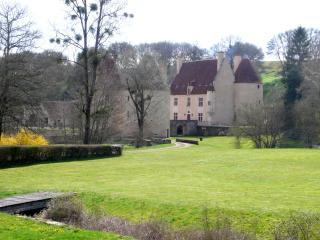 Beautiful Villa with Swimming Pool Burgundy France