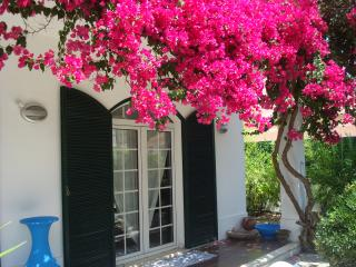Villa Zen, A lovely Villa, Sleeps 6 with plunge pool