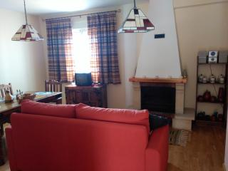 Vista del salón con chimenea tv, dvd, sofá cama matrimonio