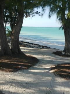 Walk through your scenic beach front trees that provides shade and filters the fresh ocean breeze..