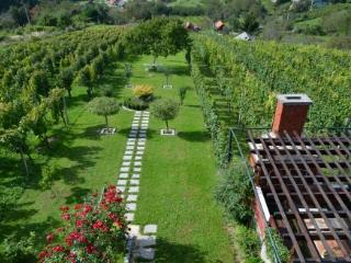 Vineyard Villa Varazdin STUDIO Apartment *** - Enjoy breathtaking views!