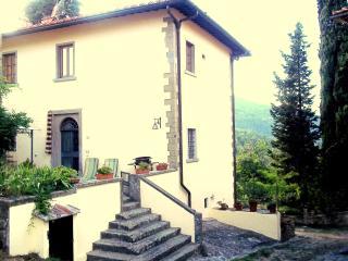 Camino antico app.to in villa a 18km da Firenze, Rignano sull'Arno