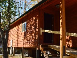River Retreat Cabins - Little Bear Bunk House