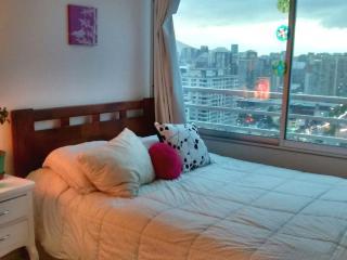 Lindo dept vista Nort piso 29 Ñuñoa/Providencia, Santiago