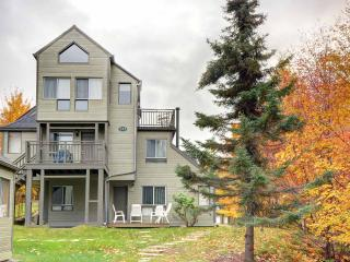 Condo Pied du Mont-Tremblant - Perfect location, Mont Tremblant